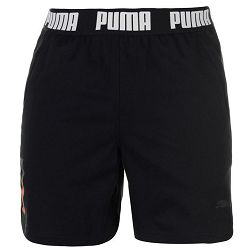 Puma 365 Training Shorts Mens